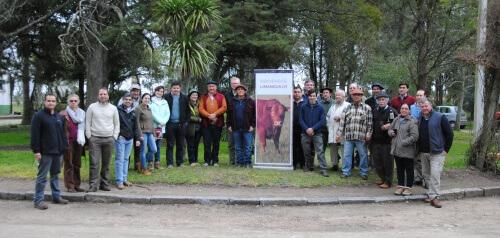presentación marca puro origen limangus uruguay